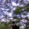 fling profile picture of Astrolonius
